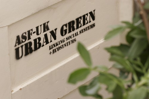 Chelsea Flower Show Urban Green