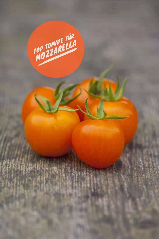 Meine bewährte Top Five Tomatenliste: Orange Blum, kleine Cocktailtomaten, sehr wuchsfreudig und gesund