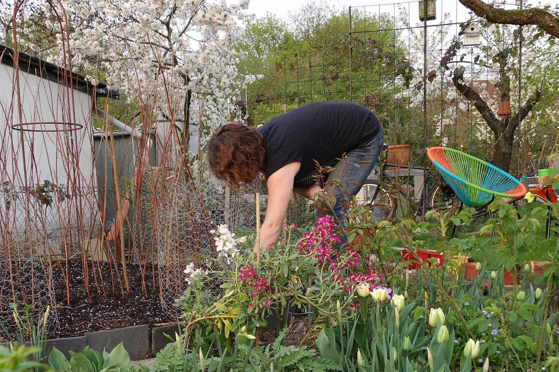 Hügelbeet anlegen und bepflanzen