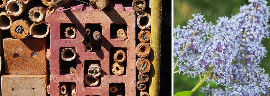 Mein Gartenjahr in zwölf Bildern Insektenhotel im Garten