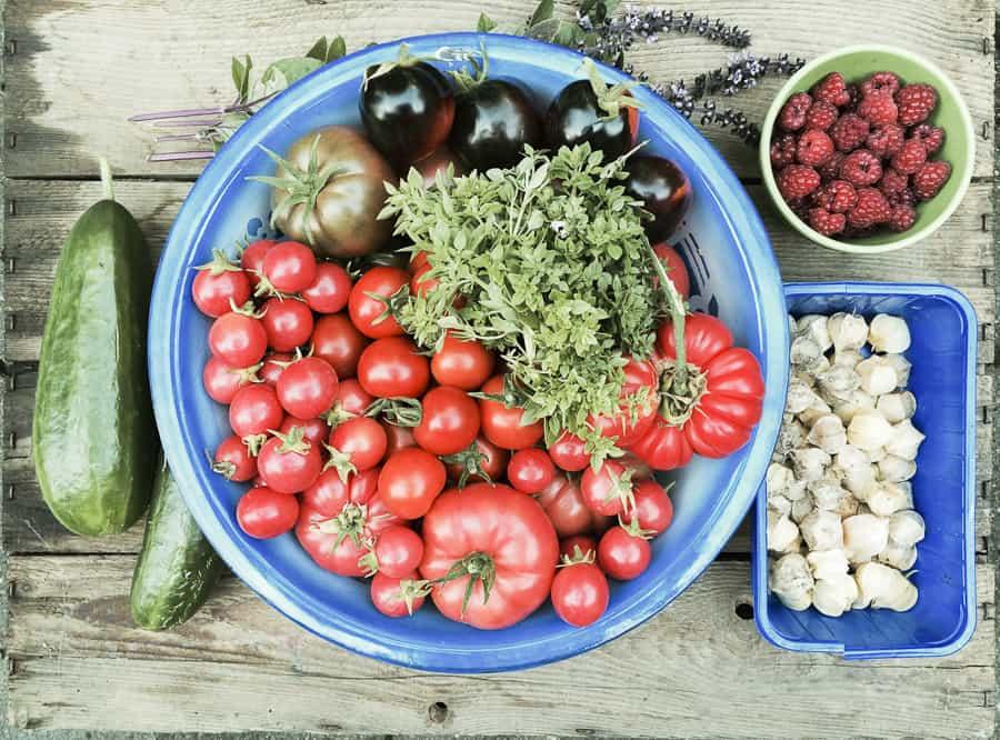 Gurken, Tomaten, Ananaskirsche, HImbeeren