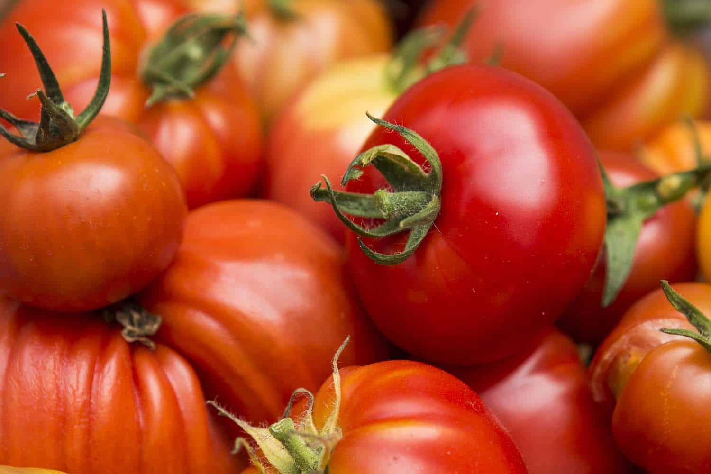 Gemüse in Töpfen anbauen