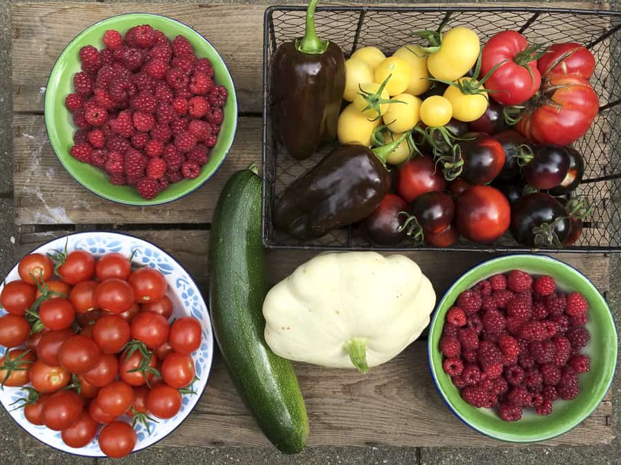 pfel tomaten himbeeren paprika zucchini patisson. Black Bedroom Furniture Sets. Home Design Ideas