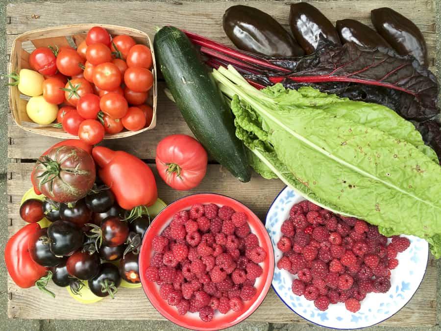 Tomaten, HImbeeren, Paprika, Zucchini
