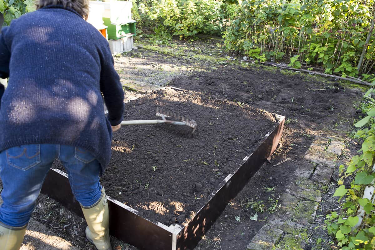 Hochbeet füllen, feiner Kompost als letzte Schicht