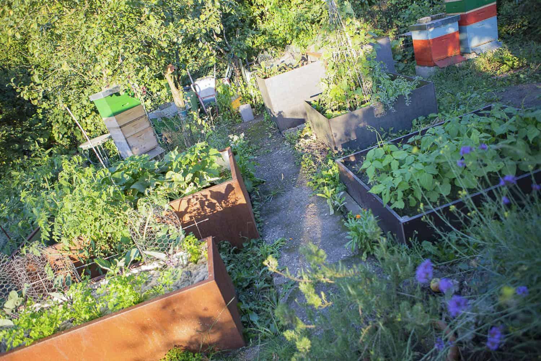 Hochbeet Auffullen Kompost Muttererde Oder Gekaufte Hochbeet Erde