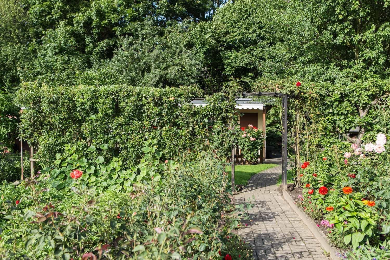 Sichtschutz im Garten Laubsträucher