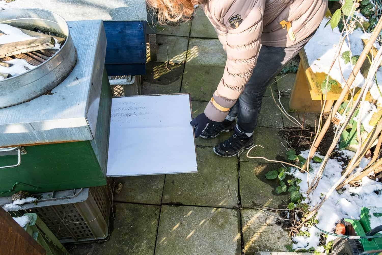 Im Dezember werden meine Bienen noch einmal gegen Varroamilben behandelt. Die Varroabehandlung im Winter ist wichtig, damit die Völker die kalte Jahreszeit möglichst befallsfrei überstehen.