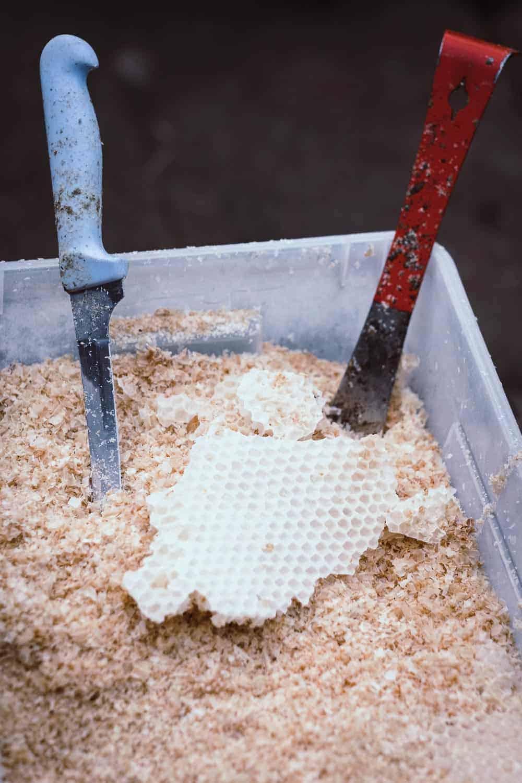 Honigraum aufsetzen feinstes Bienenwachs