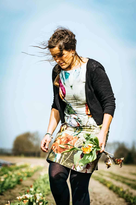 Tulpenroute Flevoland - Hannekes Pluktuin