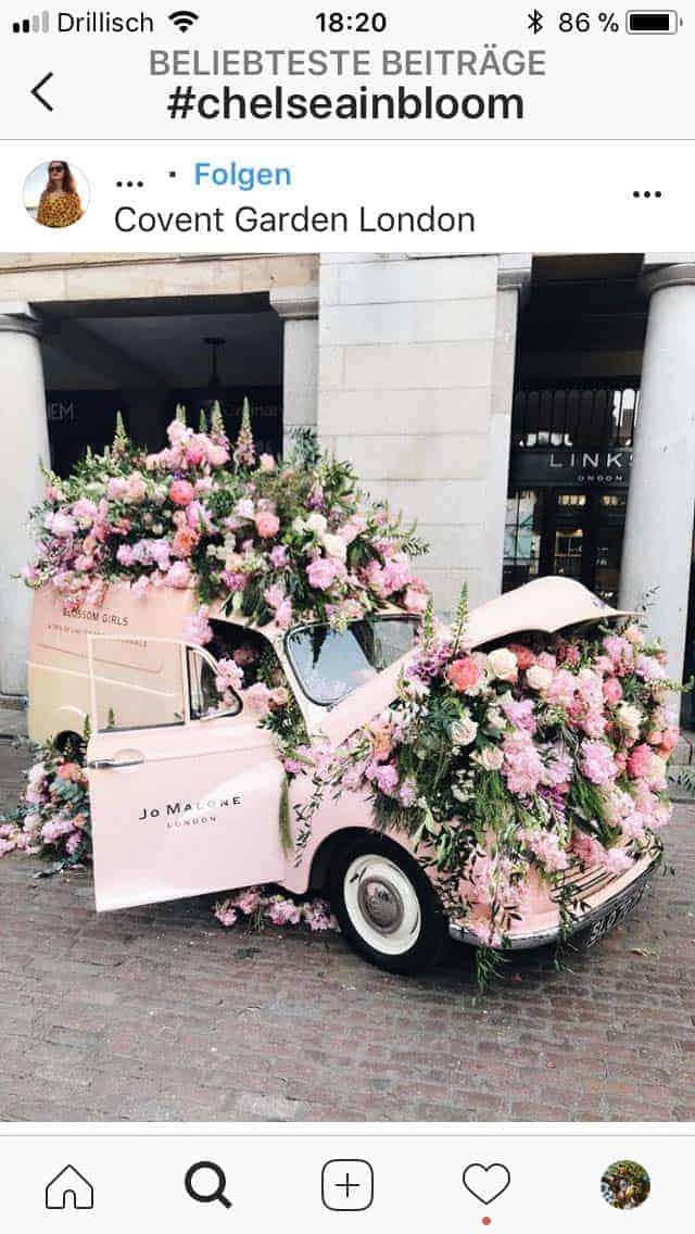 Chelsea Flower Show 2018 Chelsea in Bloom