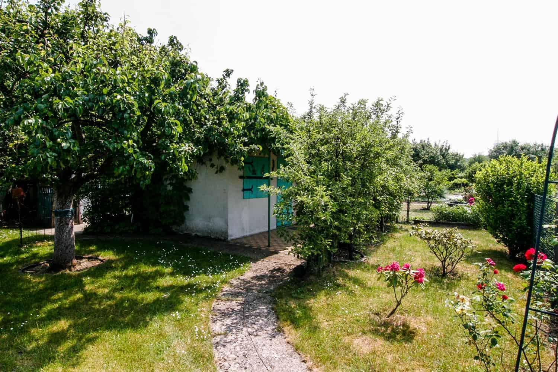 Unser Garten, vorher - nachher, vorne rechts und links
