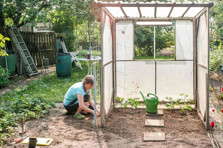 Unser Garten: Vorher-Nachher - Blumen, Kohl & Rock\'n\'Roll