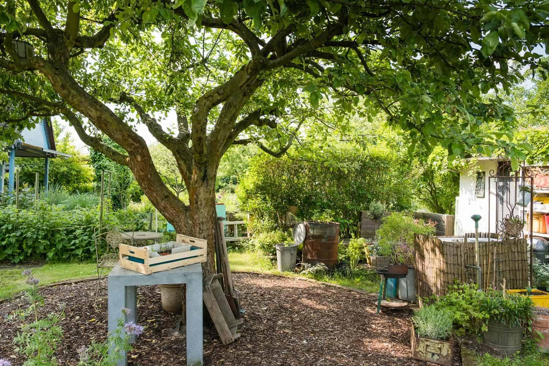 Unser Garten, vorher - nachher, Sitzplatz unterm Apfelbaum