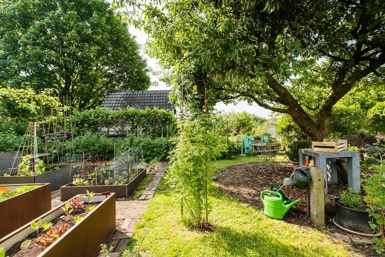 Unser Garten, vorher - nachher, der Gemüsegarten mit Hochbeeten