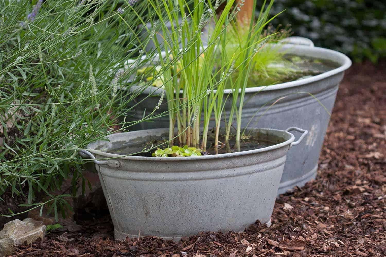 Mini-teich anlegen für die Terrasse geeignete Gefäße