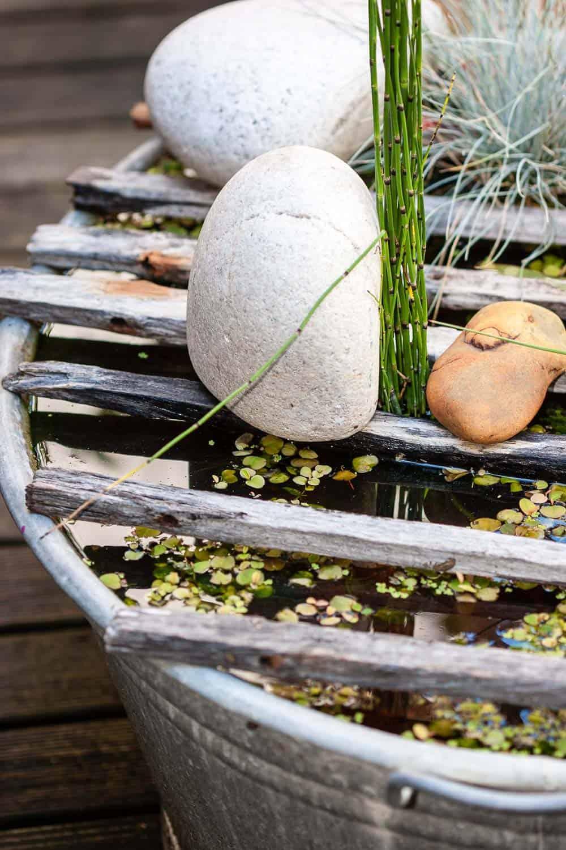 Mini-teich anlegen für die Terrasse Zinkwanne
