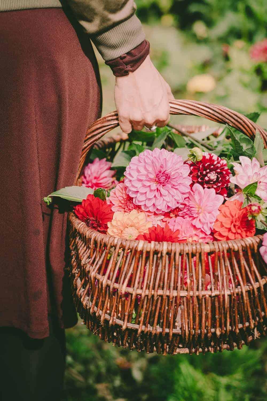 Was kommt dabei heraus wenn zehn Garten-Blogger ein Erntedank-Fest feiern? Üppige Blumendeko, köstliche Gemüsegerichte und sehr glückliche Menschen.