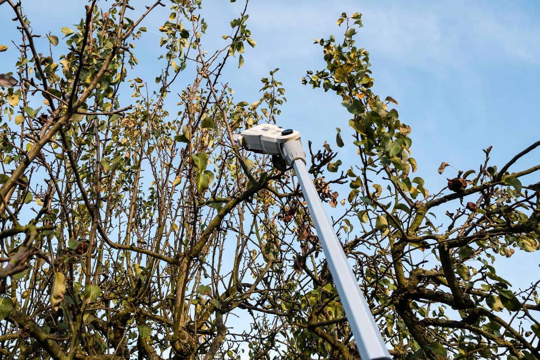Wir haben einen Hochentaster mit Akku und Teleskopstiel getestet. Was kann das Teil? Der Hochentaster in der Anwendung beim Schneiden von Bäumen und Hecken.