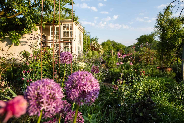 Gartengestaltung was kostet der spa blumen kohl for Gartengestaltung klein