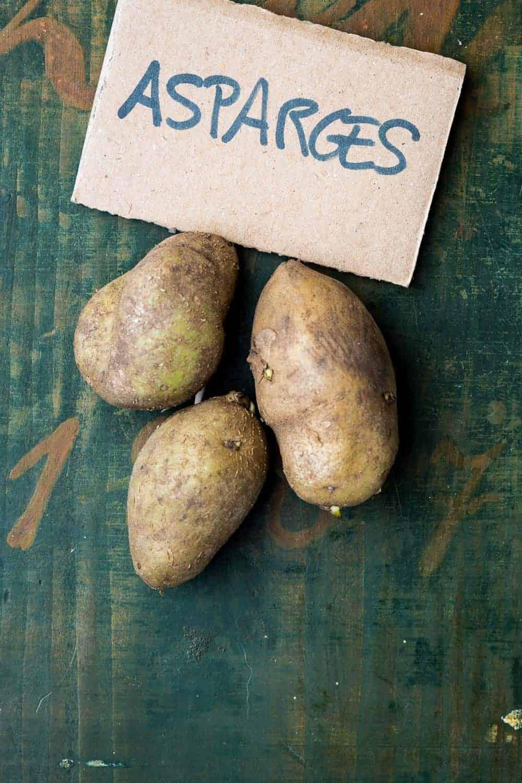 """die mittelfrühe Asparges, eine längliche Kartoffel-Sorteaus Dänemark, hat ihren Namen nicht ihrem Geschmack, sondern ihrem Aussehen zu verdanken.Eine ausgereifte Spargelkartoffel kann durchaus """"Gurkenausmaße"""" erreichen. Sie ist ertragreich und gilt in Dänemark als Feinschmeckerkartoffel."""