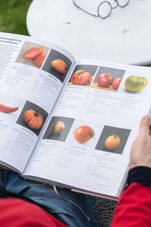 Sortenvorschläge für Tomaten