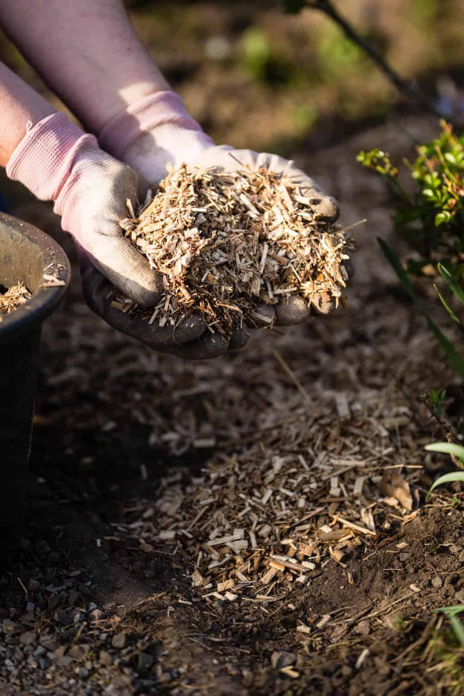 Mulchen um die Bodenqualität zu verbessern