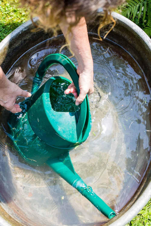 Duschwasser zum Gießen verwenden