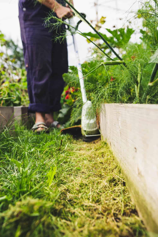 Stihl Motorsense Rasenkanten pflegen
