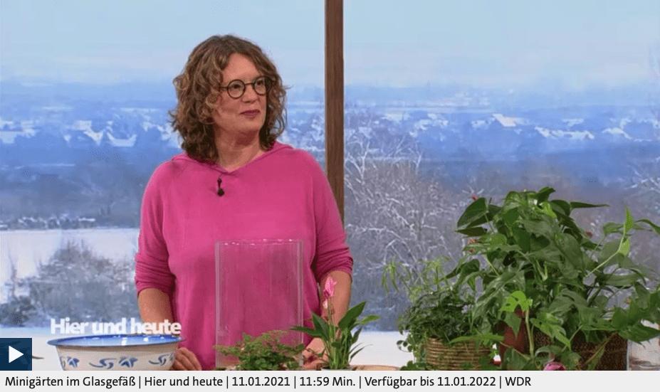 Minigärten im Glasgefäß, Anja Klein bei Hier und Heute