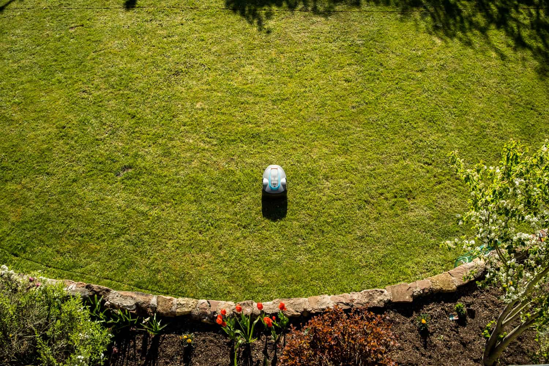 Rasenmähroboter auf Rasenfläche